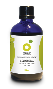 Goldenseal Tincture | Organic Hydrastis Canadensis Root